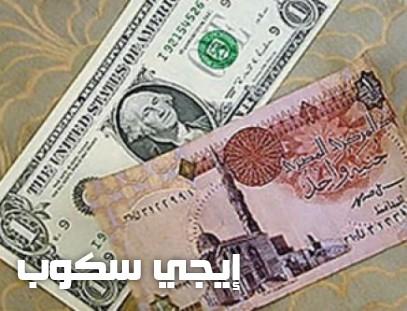 سعر الدولار اليوم الإثنين 24-4-2017 واستمرار حالة الاستقرار في أسعاره بالبنوك المصرية - إيجي سكوب